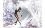 Fotobehang Vlies | Dansen, ballet | Zilver | 254x184cm