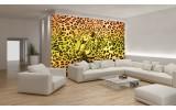 Fotobehang Vlies | Luipaard | Geel, Groen | 254x184cm