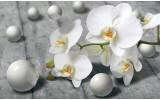 Fotobehang Vlies | Bloem, Orchidee | Grijs | 254x184cm