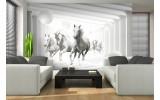 Fotobehang Vlies   Paarden, Modern   Wit   254x184cm