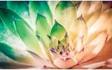 Fotobehang Vlies   Bloem, Modern   Groen   254x184cm