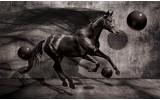 Fotobehang Vlies | Paard, Design | Zwart | 254x184cm
