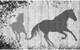 Fotobehang Vlies | Paarden, Modern | Grijs | 254x184cm